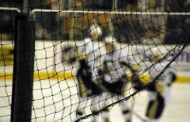 AHL cancels remainder of season